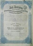 La Lowa D'importation & D'exportation Au Congo ( Aandeel Obligation Action ) - Industrie