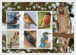 Guernsey 2019 - Europa 2019 - National Birds Miniature Sheet Mnh - Guernsey