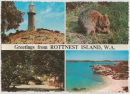 WESTERN AUSTRALIA WA Lighthouse ROTTNEST ISLAND Murray Views W30C Postcard C1970 - Australia