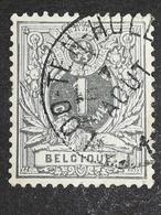 COB N ° 43 Oblitération Loo-Ten-Hulle - 1869-1888 Lion Couché