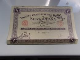 Française Des Pétroles De SILVA PLANA (100 Francs)1934 - Hist. Wertpapiere - Nonvaleurs
