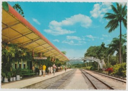 Australia QUEENSLAND QLD Kuranda Railway Station CAIRNS Engelander Kruger 799/31 Postcard C1960s - Cairns
