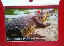 Crocodile Park  , Davao - Tourism