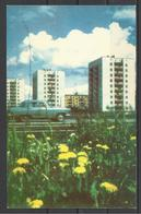 Russia, USSR, Perm, New Buildings, 1970. - Russie