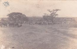CPA Ethiopie - Addis Abeba - Carte Photo - 1927 - Ethiopie