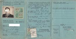PERMESSO DI LAVORO /  PERMIS DE TRAVAIL - Documento  -  BELGIO _  Visti E Marche Da Bollo - Fiscal - Historical Documents