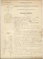 Procès Verbal  Du Palais De Fontainebleau - 1917 - Interdiction De Récolter Les Plantes Officinales - Historical Documents