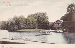 CPA Bruxelles - Bois De La Cambre -Le Lac Au Bois De La Cambre - Forêts, Parcs, Jardins