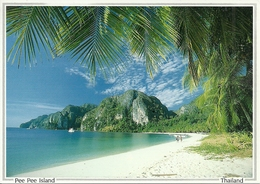 Pee Pee Island (Thailand) View Of Ton Sai Bay, Infront Of Pee Pee Don Island, La Plage, The Beach - Tailandia