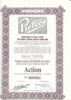 Pietoco - Trazegnies - Industrial