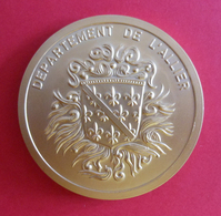 Médaille En Métal Jaune - Département De L'Allier - Conseil Général De L'Allier - Professionnels / De Société