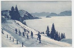 Rigi - Skilanglauf - 1907     (P-171-70821) - SZ Schwyz