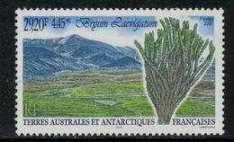 T.A.A.F. // 2001 //  No.293 Y&T Neuf** Flore Antarctique - Nuevos