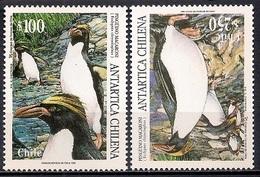 Chile 1995 - MINT - Chilean Antarctic Territory - The Macaroni Penguin - Chile