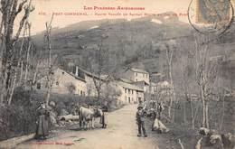 CPA Les Pyrénées Ariégeoises - PRAT COMMUNAL - HAUTE VALLEE DE SAURAT ROUTE DU COL DE PORT - Autres Communes