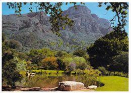 1 AK Südafrika * Der Botanische Garten Von Cape Town * - Südafrika