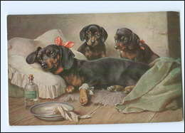 Y11886/ Dackel Ist Krank Schöne Künstler AK Hunde 1928 - Hunde