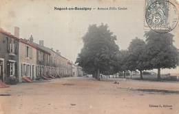 Nogent En Bassigny (52) - Avenue Félix Grelot - Nogent-en-Bassigny