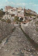 SAINT-JEANNET (06). Vieux Chemin Vers Le Village, Au Fond Le Baou - France