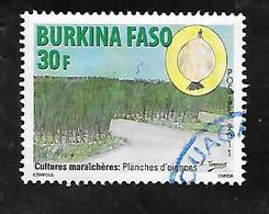 TIMBRE OBLITERE DU BURKINA DE 2011 N° MICHEL 1949 - Burkina Faso (1984-...)
