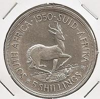 AFRIQUE DU SUD/SOUTH AFRICA 5 SHILLINGS  1950 SILVER 28G  RARE UNC? RARE MTG 83,000 RARE  UNC??? - Afrique Du Sud