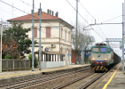 99 FS Cartoline Treni 655.293 Ansaldo OM Godo Di Russi Ravenna Railroad Trein Railways Zug Treno Steam Chemin De Fer - Treni