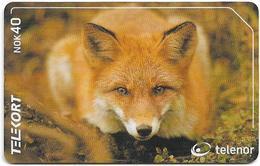 Norway - Telenor - Animals - Fox - N-202 - 02.2001, 3.000ex, Used - Norway