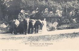 Mme De Valsois Et Ses Eléphants - Sortie De La Grotte       (A-85-160915) - Elefanti