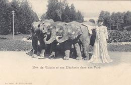 Mme De Valsois Et Ses Eléphants - Dans Son Parc      (A-85-160915) - Elefanti