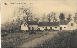 Melle   *  Melle-lez-Gand - Caritas  -  La Ferme - Melle
