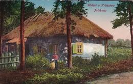 AK Widoki Z Krolestwa Polskiego - Polnisches Bauernhaus Und Bewohner - Ca. 1910 (41863) - Polen