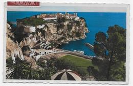 (RECTO / VERSO) MONACO - VUE PRISE DE L' ENTREE DE LA GROTTE DU JARDIN EXOT. - TIMBRES ET CACHET DE MONACO - FORMAT CPA - Monaco