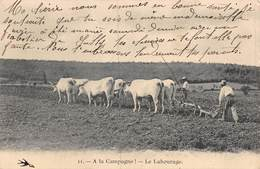 PIE-FO -19-6613 :  A LA CAMPAGNE. LE LABOURAGE AVEC LES BOEUFS. NIEVRE ??? - Cultures