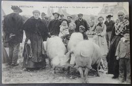 CPA 29 SAINT POL DE LEON - La Foire Aux Gros Gorrets - ELD 410 - Réf. F 185 - Saint-Pol-de-Léon