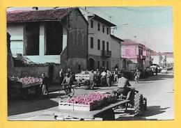Borgo D'Ale (VC) - Non Viaggiata - Italia