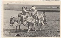 Coxyde , Koksijde: Promenade à Dos D'ânes , (  Albert  , N° 553 ) - Koksijde
