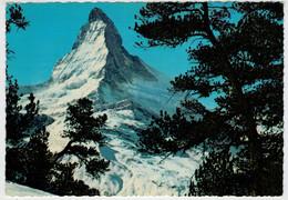 WALLIS   SCHWEIZ   MATTERHORN    -  MONT  CERVIN  (VIAGGIATA) - VS Valais