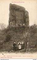 D65  CASTELNAU RIVIERE- BASSE  Ruines Du Château   ..... - Castelnau Riviere Basse