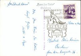 Austria Card Dinosaur Haus Der Natur Dinosaurier Hd51 - 1945-.... 2nd Republic