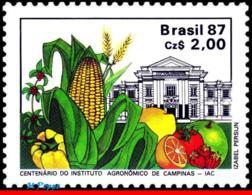 Ref. BR-2106 BRAZIL 1987 AGRICULTURE, AGRICULTURE INSTITUTE OF, CAMPINAS, CENT., IAC, FRUIT, MNH 1V Sc# 2106 - Brazil