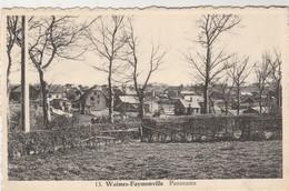 Waimes - Faymonville , Panorama,( N° 13 ) - Waimes - Weismes