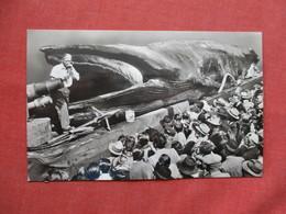 RPPC  Jonah The Giant Whale .  Ref 3424 - Animals