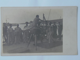 K.U.K. Kriegsmarine Marine Pola Foto Photo SMS 270 1917 Ed Rotes Kreuz Turnen Nr 336 - Warships
