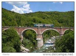 161 Treno ALn 663.1199 Fiat, Savigliano Nucetto Cuneo Rairoad Trein Railweys Treni Steam Chemin De Fer Piemonte - Treni
