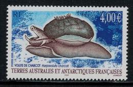 T.A.A.F. // 2005 //  No.411 Y&T Neuf** Mollusque, Volute De Charcot - Nuevos