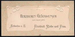 B7329 - Friedrich Riebe Bad Schandau - Präge Glückwunschkarte  Visitenkarte - Visiting Cards