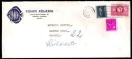 1301  Fishes - Aquarium - 1955 Cover - Cb - 3,75  A22 - Poissons