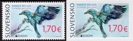 2019 - SLOVACCHIA / SLOVAKIA - EUROPA  CEPT - UCCELLI / BIRDS - SET COMPLETO. MNH. - 2019