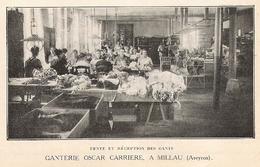 MILLAU Ganterie Oscar Carrière  Fente Et Réception Des Gants  1922 - Old Paper