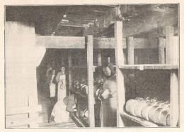 ROQUEFORT Intérieur D'une Cave De La Société Agricole De Roquefort  1922 - Old Paper